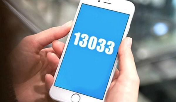 13033-5